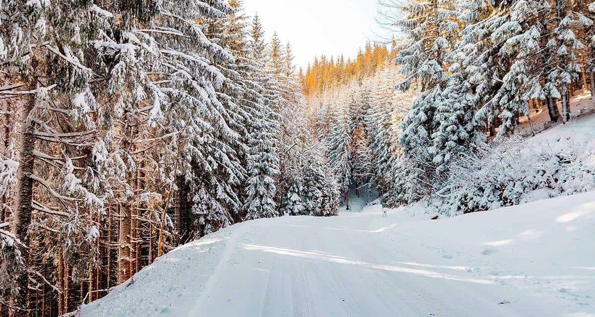 https://www.terminillo.eu/wp-content/uploads/2019/11/scatta-obbligo-gomme-invernali-1200x640.jpg