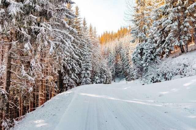 obbligo gomme invernali